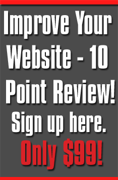 website review only $99